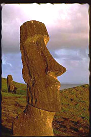 thinmoai